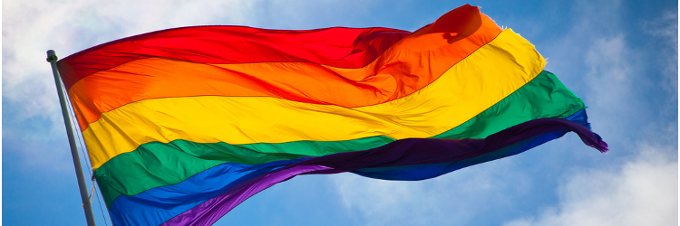 Rainbow flag in the wind