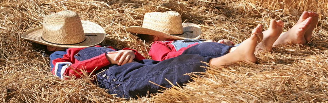 two boys sleeping in straw covering their faces with straw hats