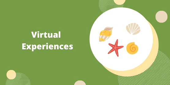 Virtual Experiences shells image